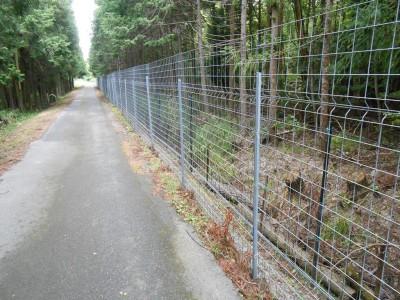 山際に巡らされた獣害防止用フェンス