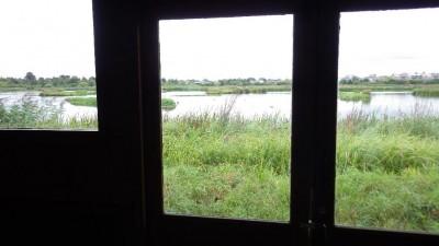 観察小屋からの湿地の景観