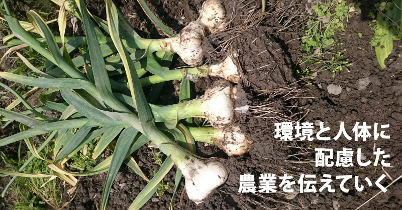環境と人体に配慮した農業を伝えていく
